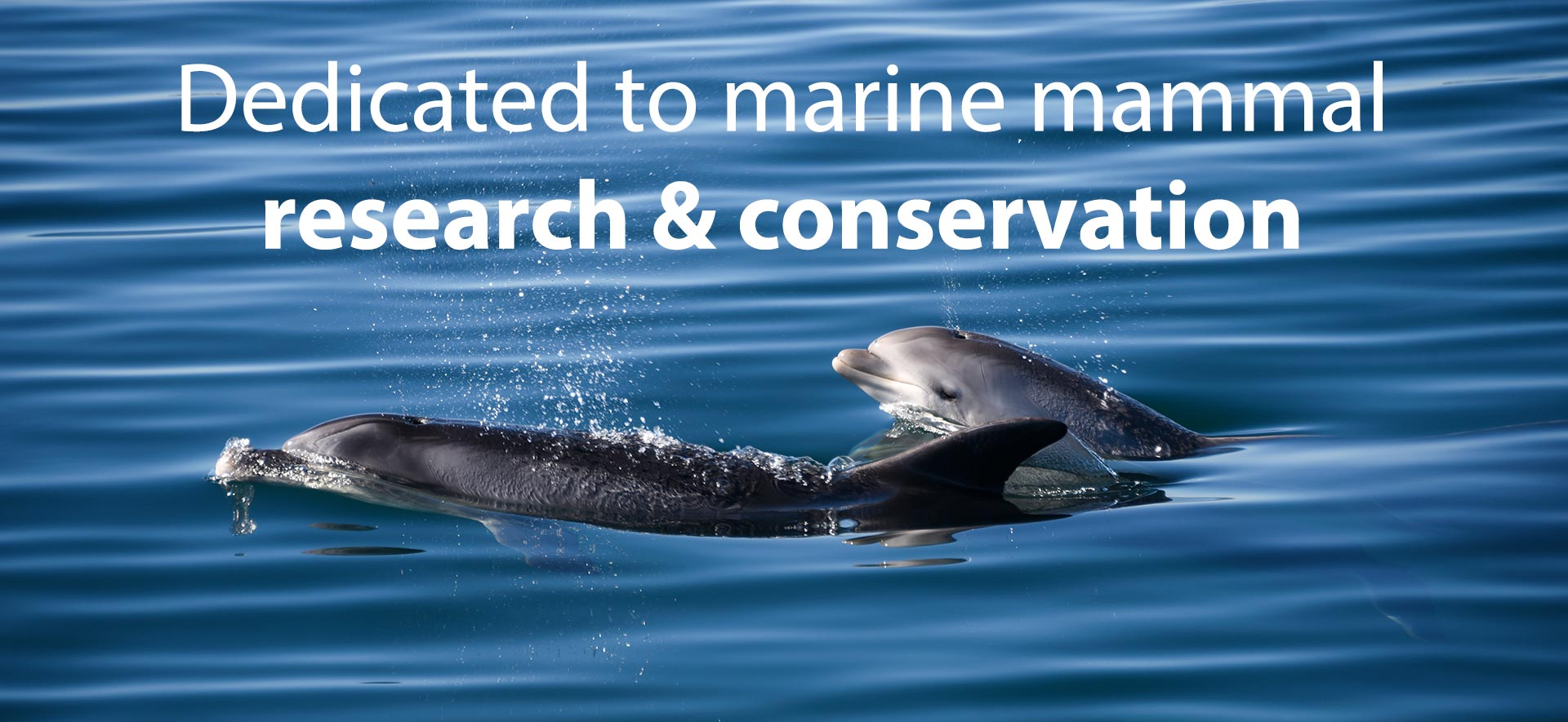 Marine research and education