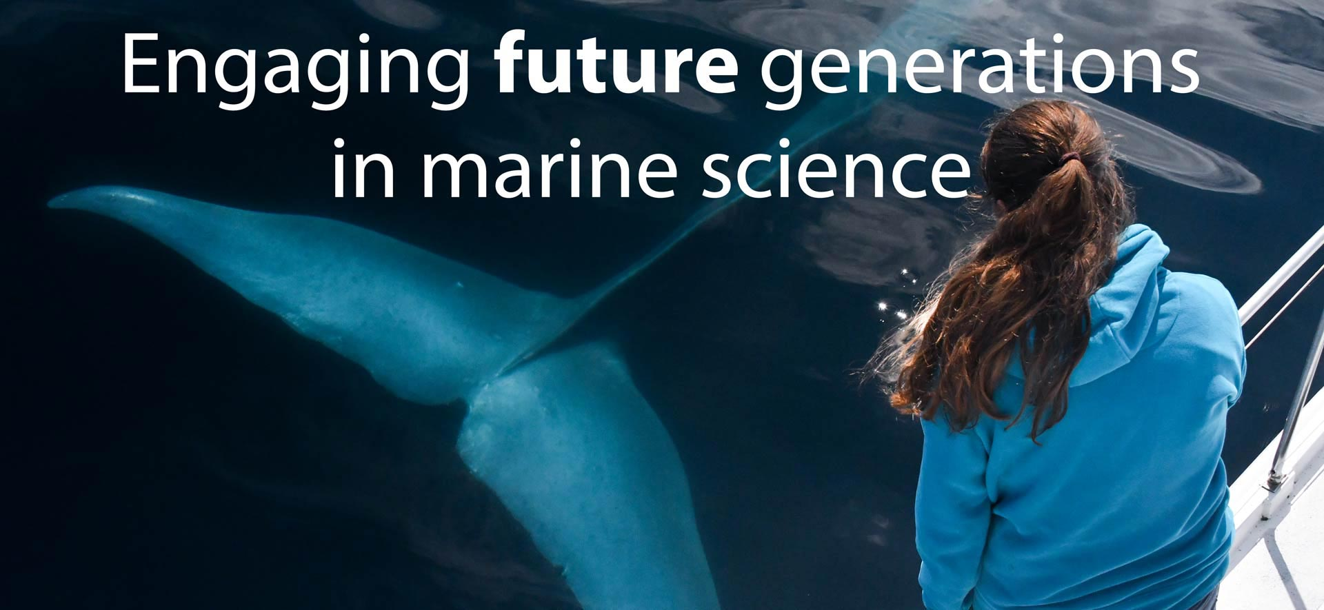Marine mammal research and education
