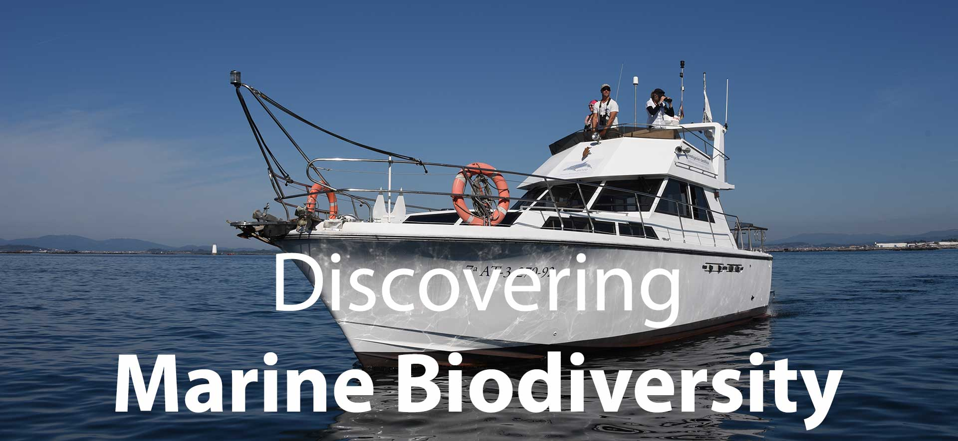 Marine biodiversity research